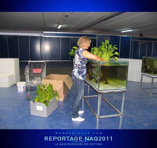 2011sett- NapoliAquatica
